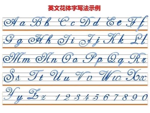 英文花体字和圆体字的区别