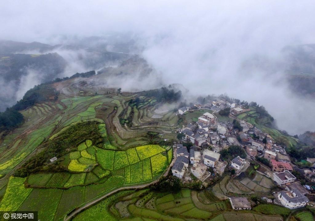 贵州山村梯田绿意盎然生机勃勃 云雾轻飘似仙境