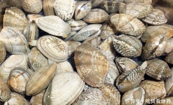 洗花蛤时,除了可以加盐,教你几招,花蛤吐得干净又快