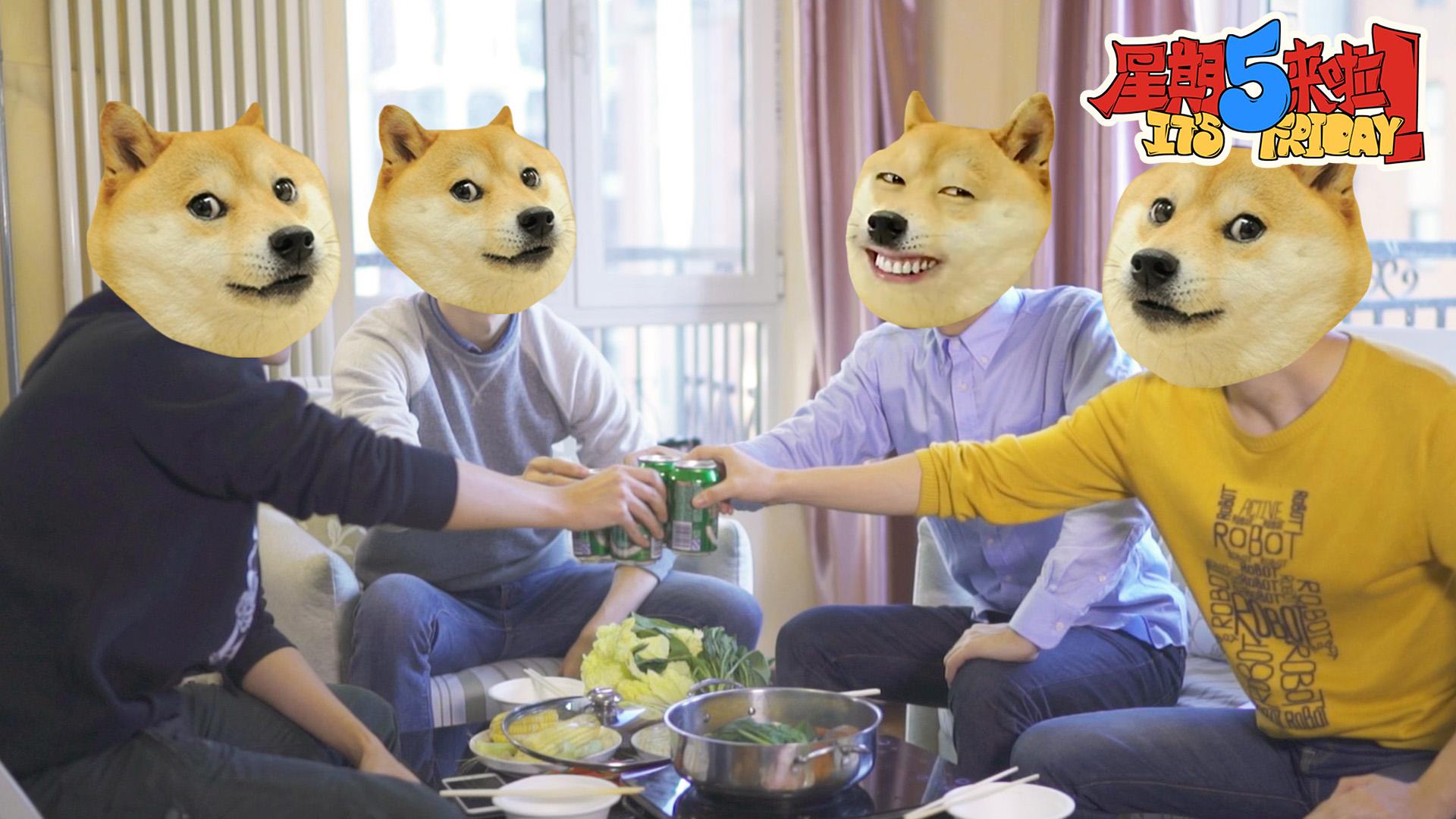 双11单身狗难以承受之痛【星期五来啦】