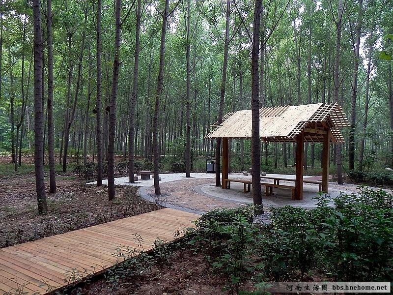 森林幼儿园野餐