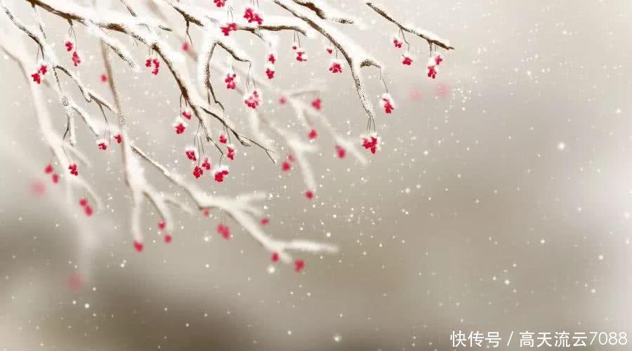 七言绝句《冬雪梅花》平水韵