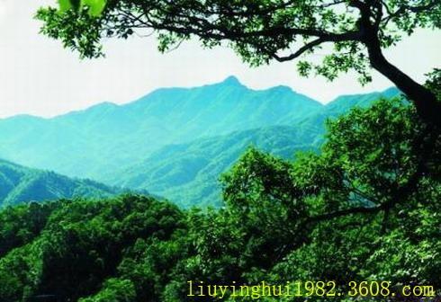 妙道山国家森林公园