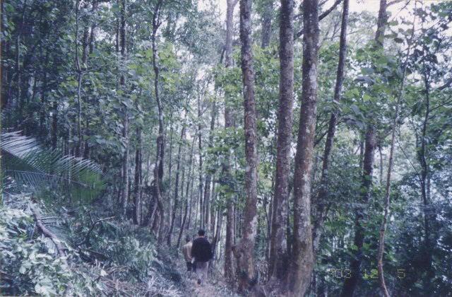 公园现有植物种类242科1069属2689种,属国家和省级重点保护的珍稀植物