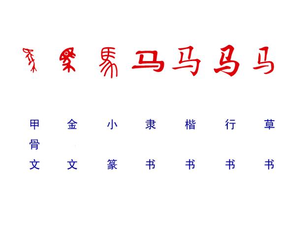 关于汉字字体变化较大的有哪些