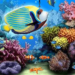 海洋水族馆动态壁纸