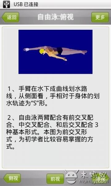 游泳动画教程截图3