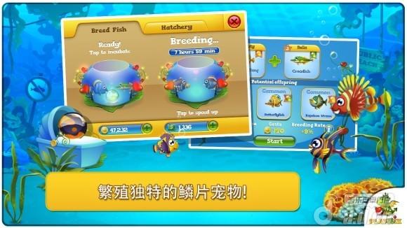 口袋水族馆 修改版 Pocket Fishdom截图1