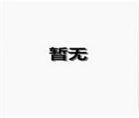 蓝波斯菊11.png