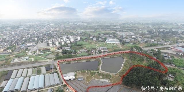 成都市青白江25亩鱼塘带果园出租,青蓝大道30亩农家乐低价转让