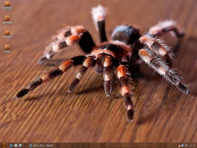 捏蜘蛛橡皮泥步骤图